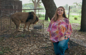 Roar off, Carole Baskin – we don't need another 'Tiger King' show